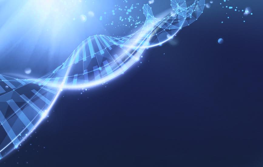 De Reconnective Healing werkt op het ADN